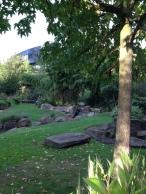 Hammersmith_Park_Albero